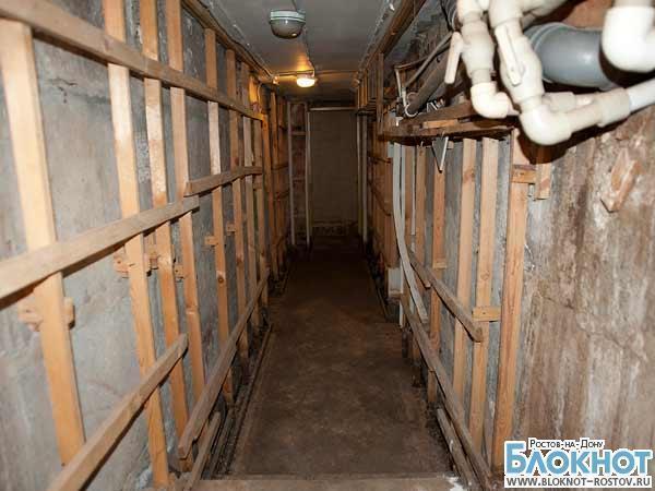 В Ростове прокуратура проверит управляющую компанию за кладбище домашних животных в подвале