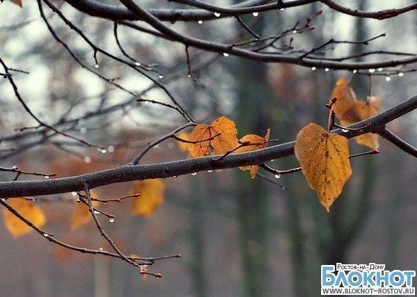 Последняя неделя осени в Ростове будет дождливой, столбик термометра опустится до минусовых температур