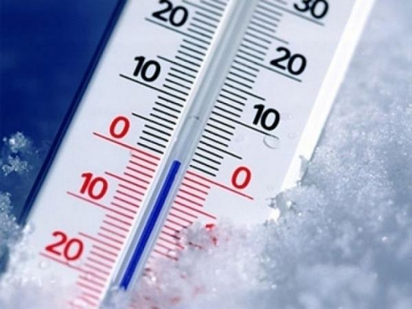 В Ростовской области ожидаются заморозки до –1°С