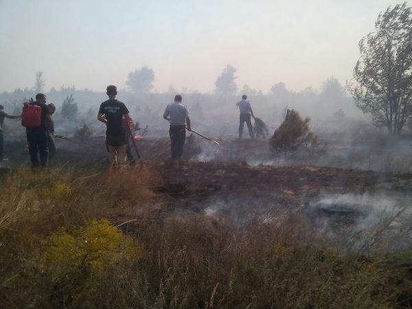 ВРостовской области стерритории горящего питомника эвакуируют людей