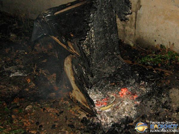 В Ростове 65-летняя пенсионерка подожгла вольер с собакой: животное заживо сгорело