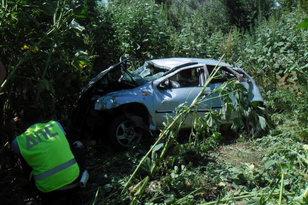 В Ростовской области водитель ВАЗ слетел с автодороги