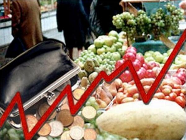 Дончане пожаловались в Общественную палату РФ на подорожание продуктов