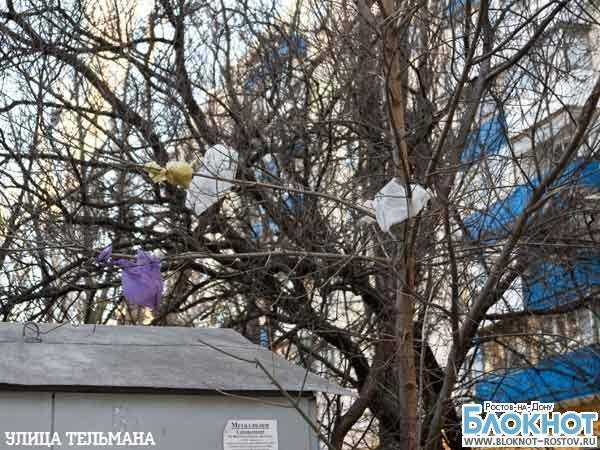 С приходом весны вместо подснежников ростовчане увидели мусор