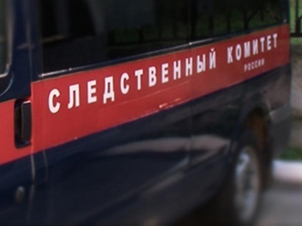 Жительница Новочеркасска утопила новорожденную дочку и засыпала труп золой