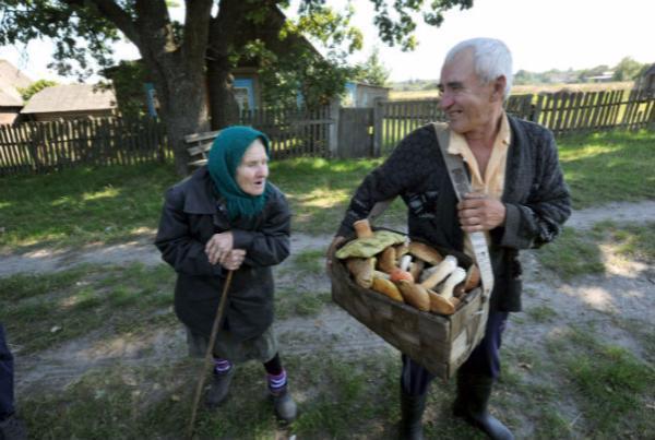 Ребенок скончался ототравления грибами вРостове