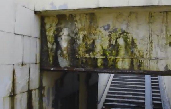 В Ростове подземный переход заливает канализационные стоки