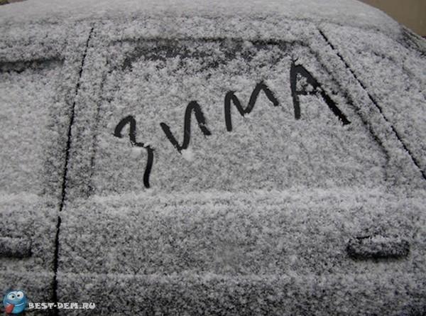 Гололедица, усиление ветра и метель ожидаются в Ростовской области