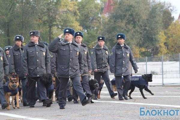 В Ростове служебным собакам сшили зимнюю униформу