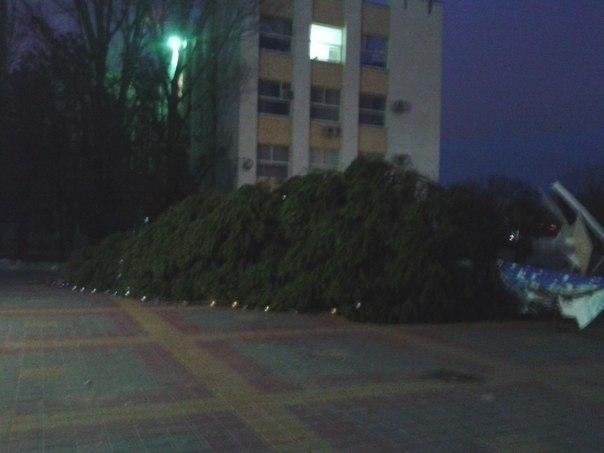 Ростовчане растащили украшения с упавшей елки. Фото