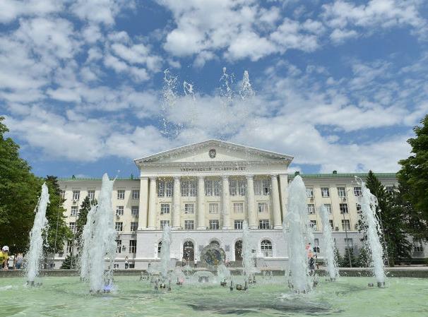 В Китае откроется Донской институт