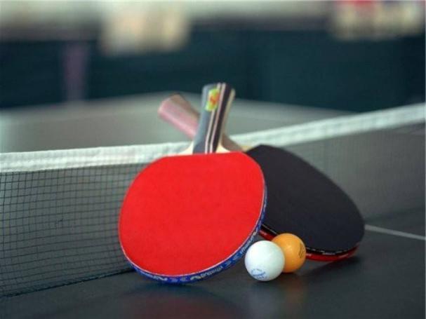 Дончанки заработала путевку на Кубок Европейской федерации настольного тенниса.