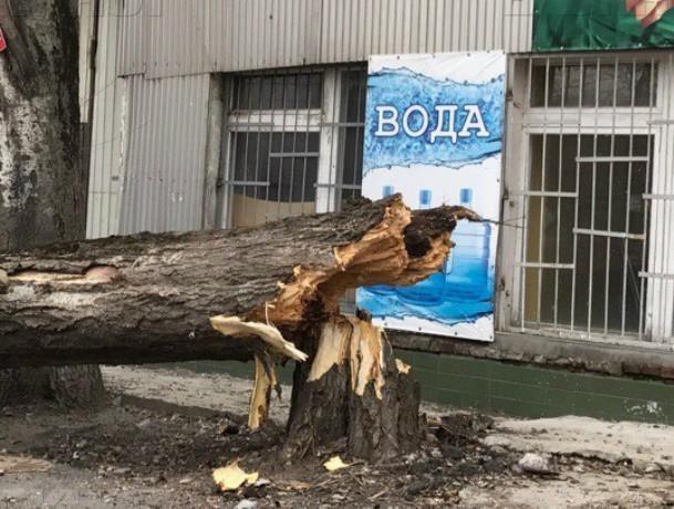 Штормовое предупреждение объявили спасатели в Ростове