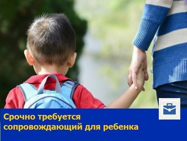 Срочно требуется помощник и сопровождающий для школьника