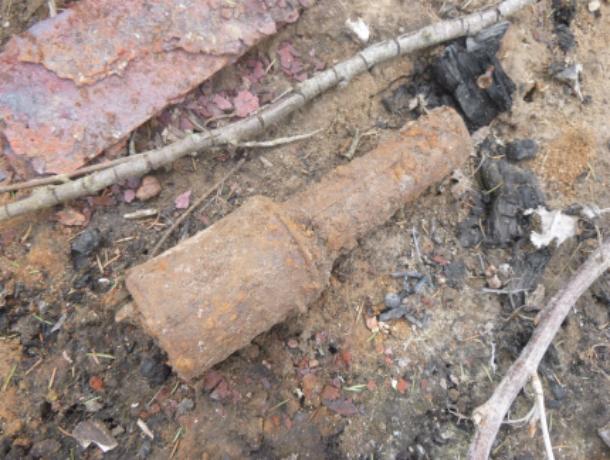 ВРостове-на-Дону отыскали ручную гранату