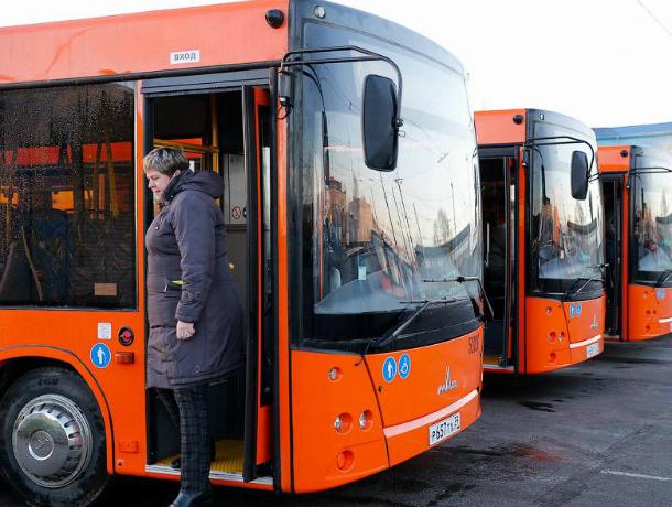 УФАС отменило закупку напоставку ста новых автобусов вРостов