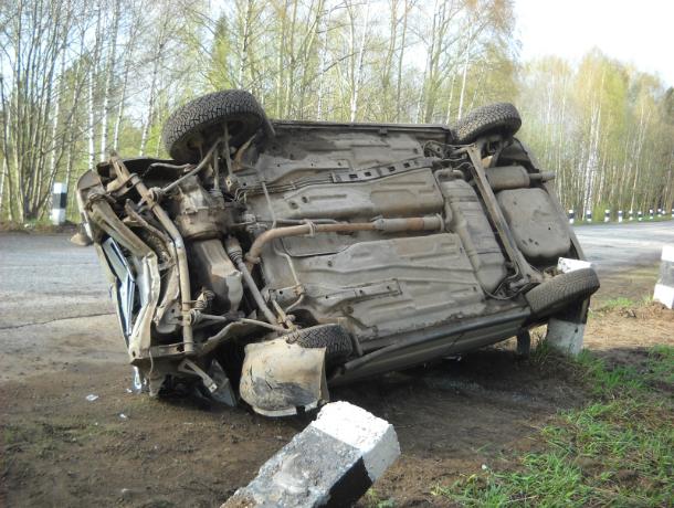 ВРостовской области натрассе перевернулся автомобиль