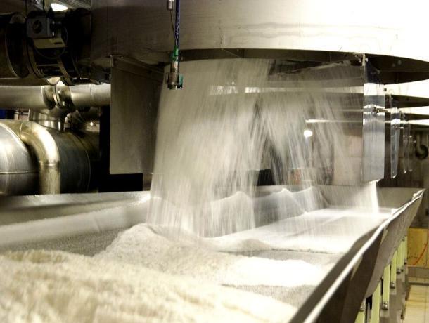 Китайцы помогут построить в Ростовской области сахарный завод