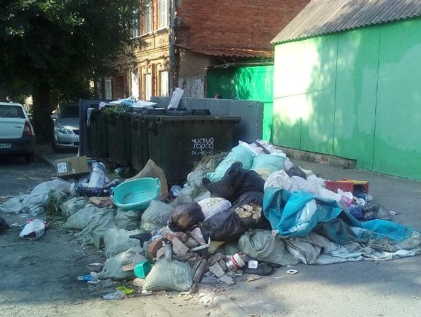 «Весело» перебрасывают друг другу обязательства по уборке мусора чиновники и «Чистый город» в Ростове