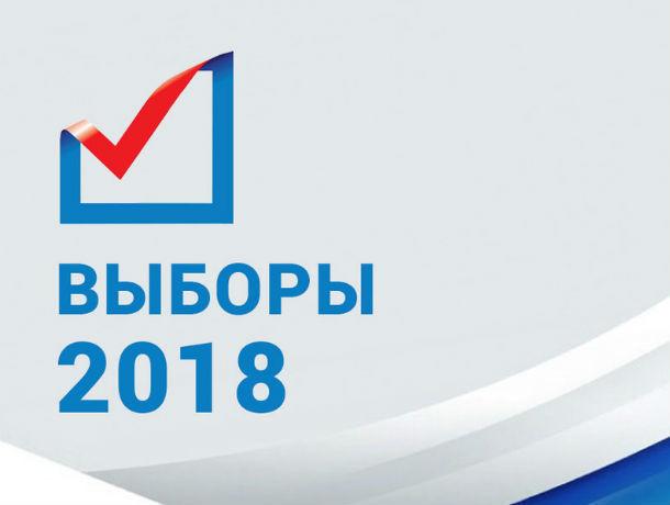 Выборы президента РФ пройдут под надзором тысяч зорких глаз в Ростове