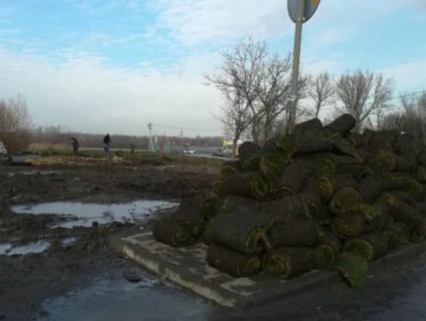 «Чудесный» свежий газон укатали прямо в грязь на левобережье Ростова