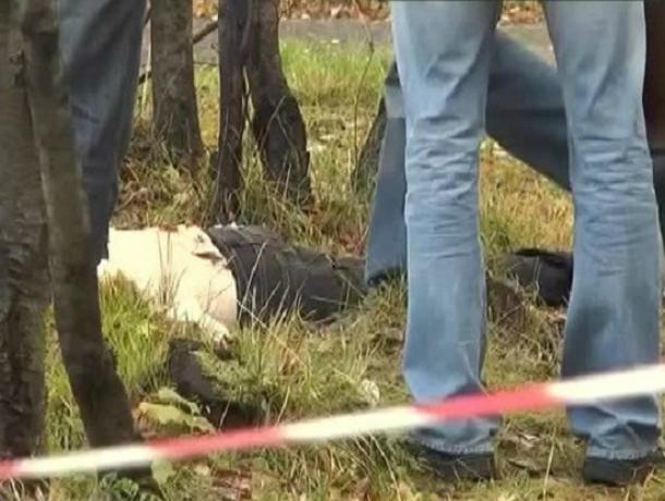 Влесополосе под Таганрогом отыскали труп пожилого мужчины