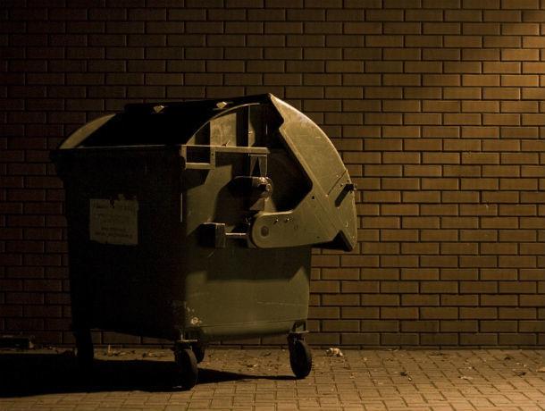 Жители частного сектора Ростова могут ознакомиться с графиками вывоза мусора