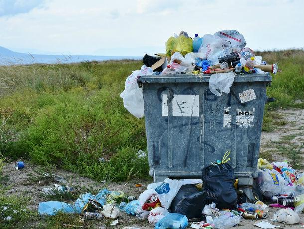 Любителей раскидывать мусор оштрафовали на 30 млн рублей в Ростовской области