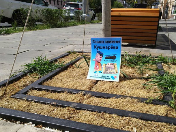 Газону из пожухлой травы присвоили имя Кушнарева в Ростове