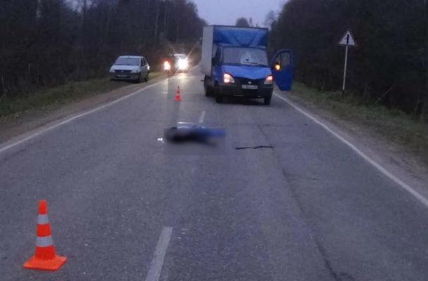 Мужчина-пешеход умер под колесами «Газели» натрассе вРостовской области