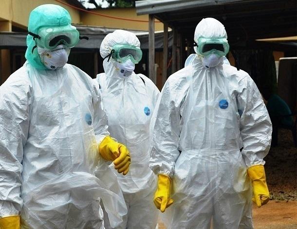 Ростовские учёные предупредили о вероятном распространении чумы в РФ