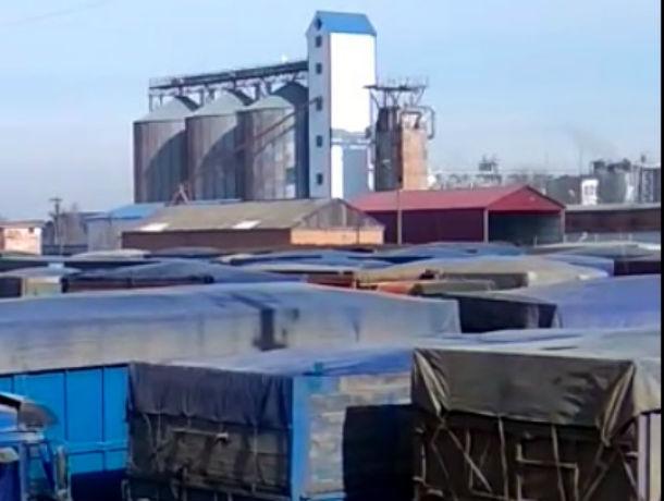 Забастовка перевозчиков зерна срывает планы по экспорту в Ростовской области