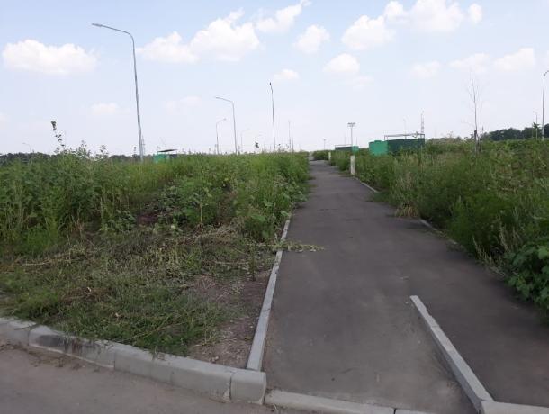 Содержание нового городского кладбища Ростова обойдется в 4,5 млн рублей