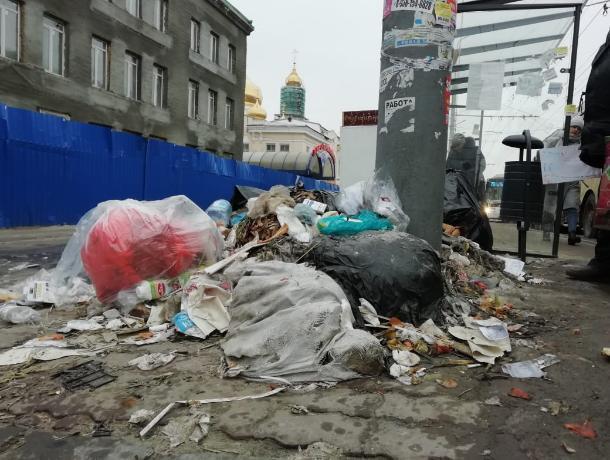 Ростов-на-Дону примет участие во всероссийской акции против «мусорной» реформы