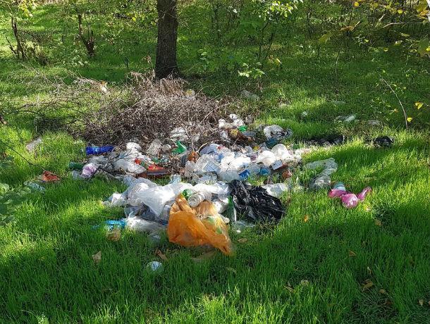 Чиновники в Семикаракорске «убирают» свалки с помощью фотошопа