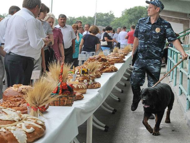 У лидера России по экспорту зерна - Ростовской области из-за нехватки зерна подорожал хлеб
