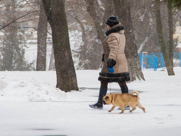 Снег продолжит сыпать на головы ростовчан в среду