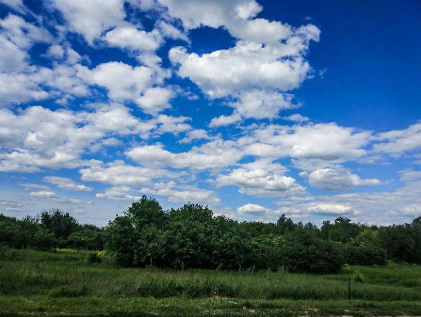 От жары к прохладе: какая погода будет в Ростове в понедельник, 22 июля