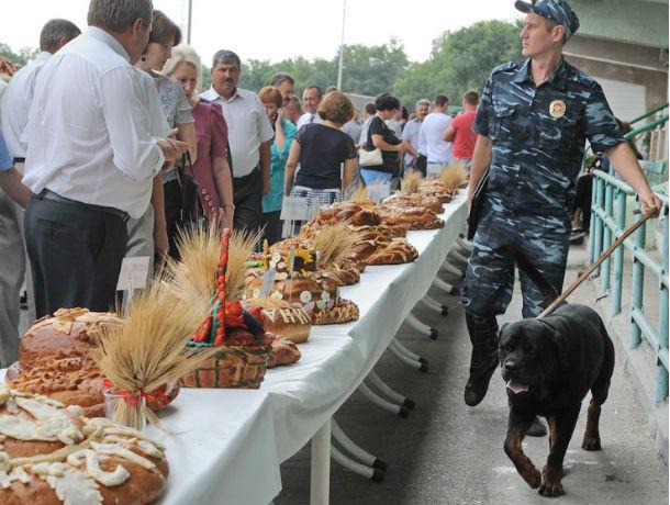 Ростовские власти уменьшили прожиточный минимум для детей на 145 рублей