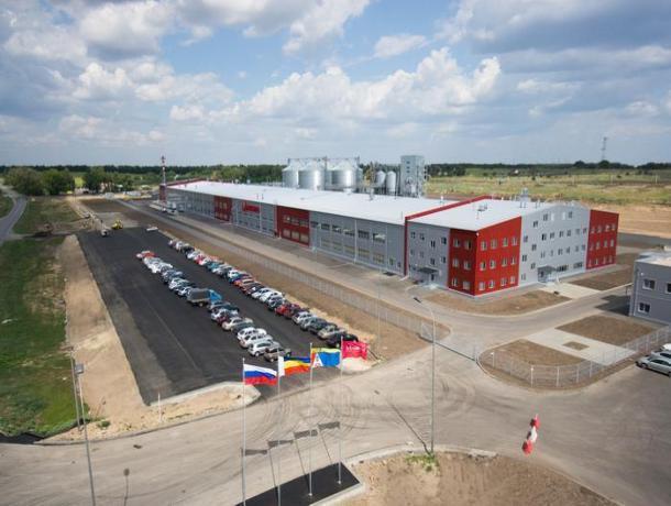 Кондитерская фабрика «Мишкино» в Ростовской области останавливает производство