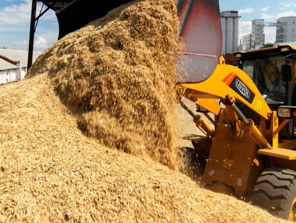 ВРостовской области собран рекордный урожай зерновых