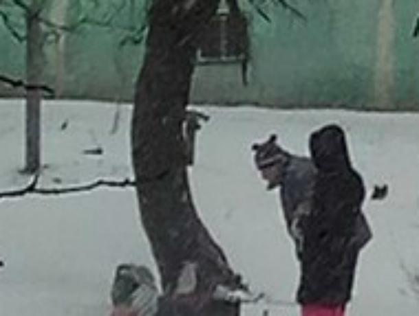 Соскучившиеся по шашлыкам ростовчане бросили вызов разбушевавшейся стихии во дворе многоэтажки
