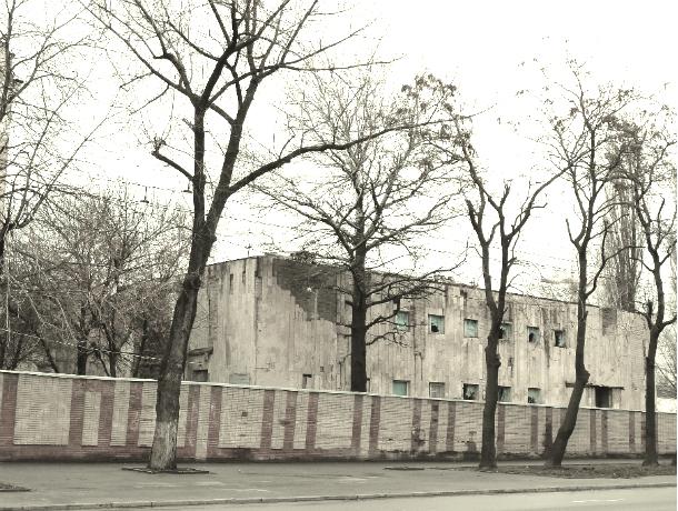Историческая Соборная мечеть в Ростове выставлена на аукцион