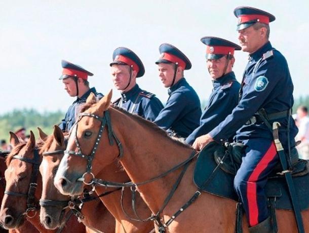 Власти Ростова пожаловались на нехватку казаков-дружинников