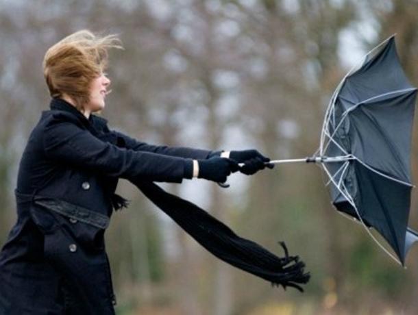 Пасмурная и ветреная погода подпортит субботний выходной жителям Ростова