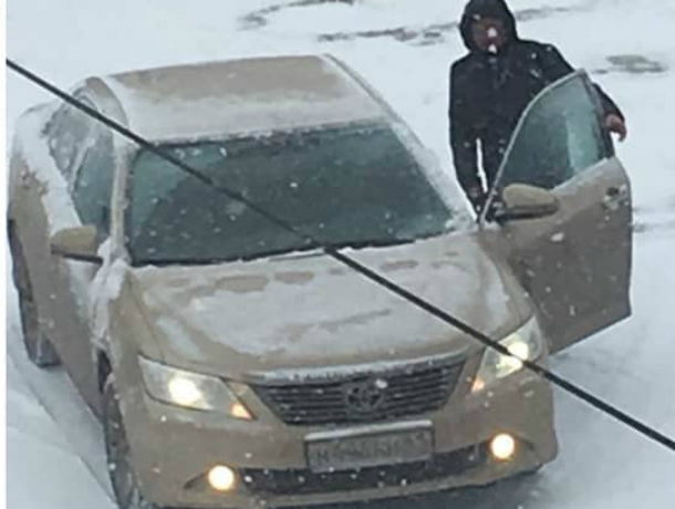 Агрессивный автомобилист расстреливал собак на глазах у ошарашенных прохожих в Ростове