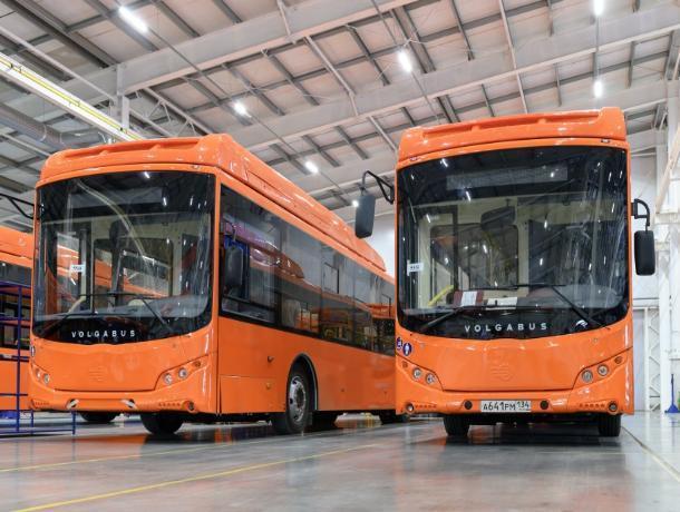 В Ростове приобретут еще 50 автобусов с кондиционерами