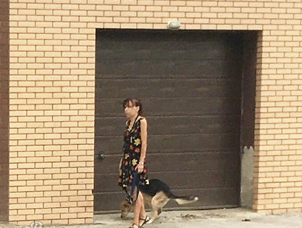 Обжигающе-вонючую месть «бывшему мужу» устроила дама с собачкой в центре Ростова