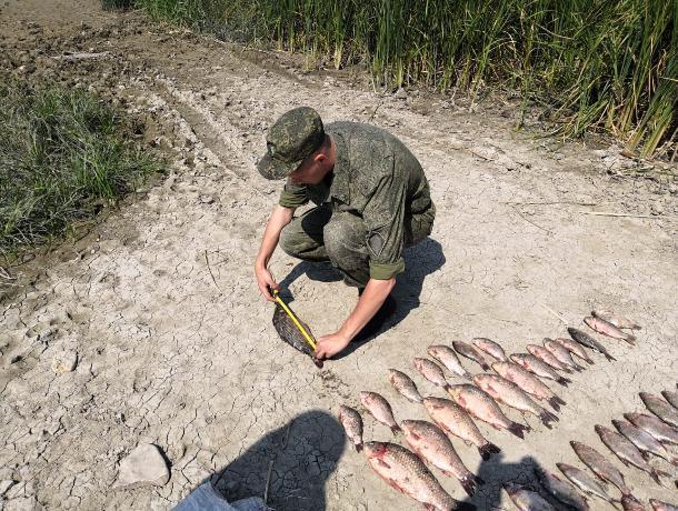 Ростовские пограничники поймали с поличным браконьера