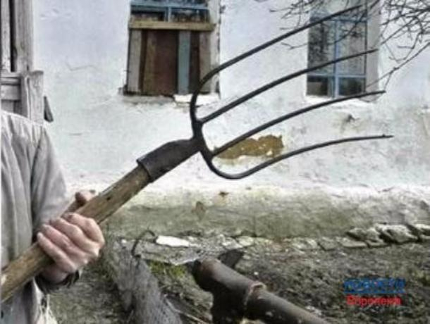 Смертельный для отца удар вилами в шею совершил мужчина в Ростовской области
